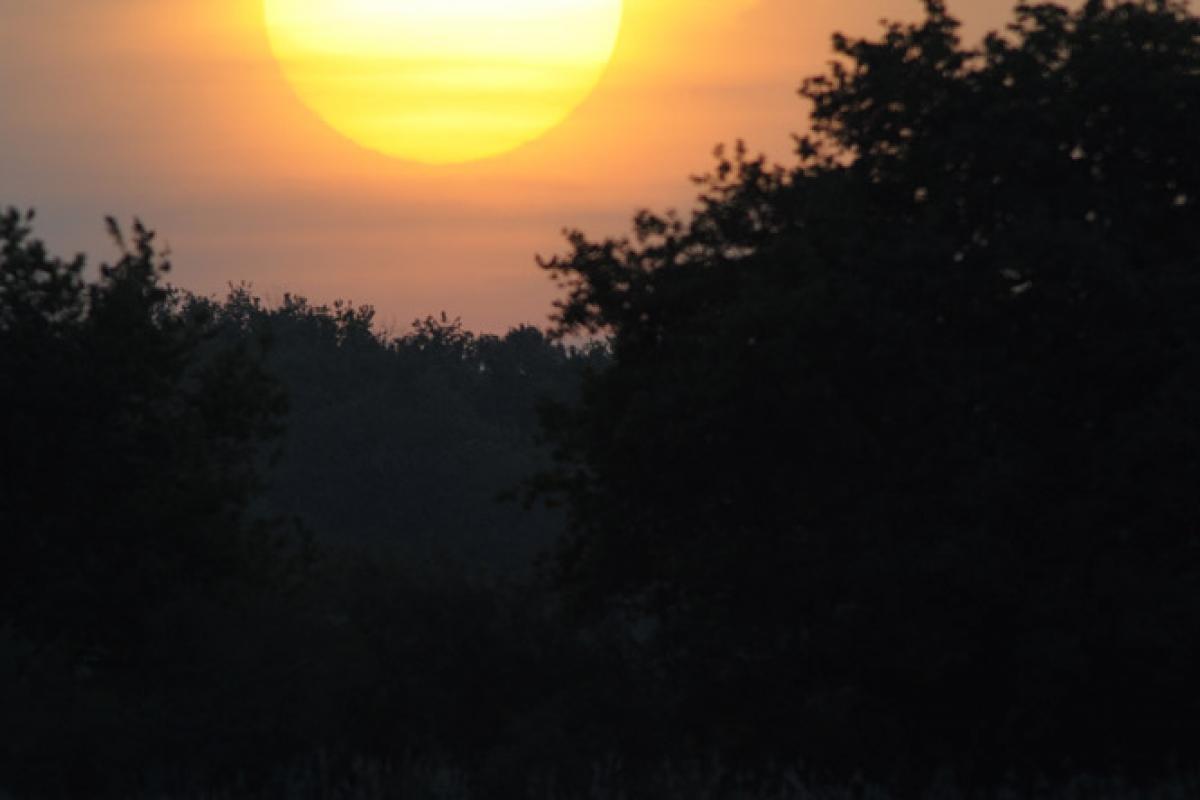Lever de soleil sur un étang de Brenne